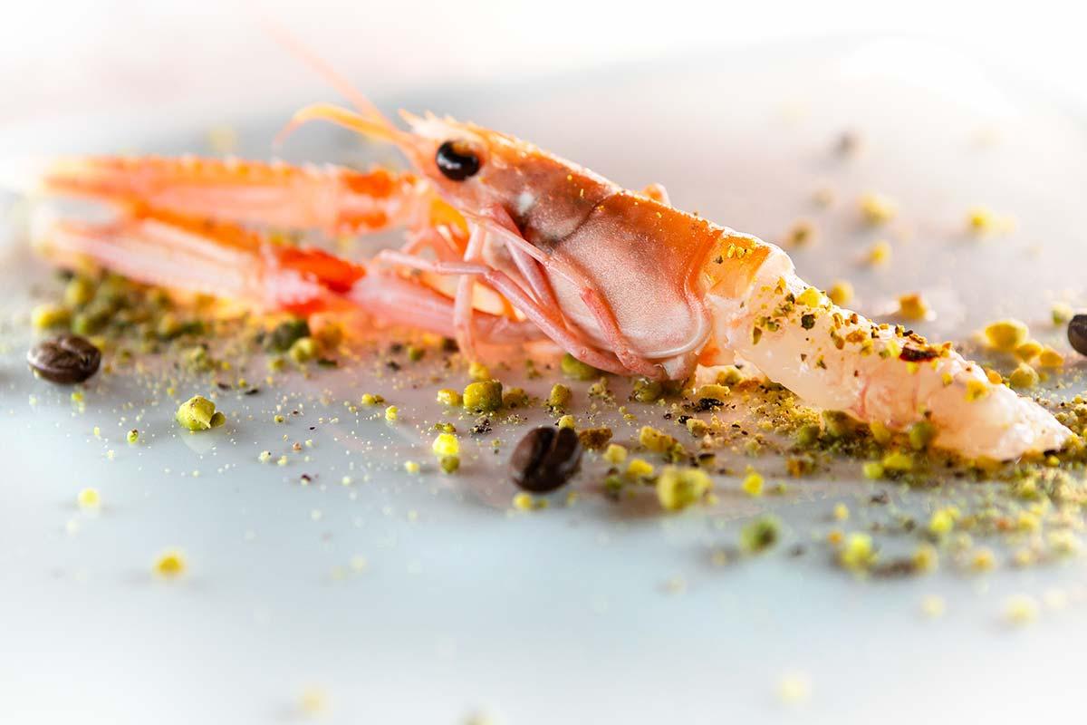 Piatti di pesce crudo Dime Bistrot ristorante Marghera